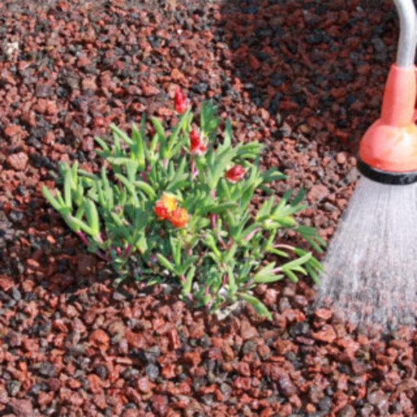DIY SPÉCIAL JARDIN : UN PETIT COIN À PLANTES GRASSES- Disposer la pouzzolane
