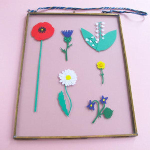 L'herbier en papier- Positionnez dans le cadre