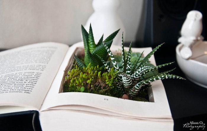 Le livre végétal-Le résultat