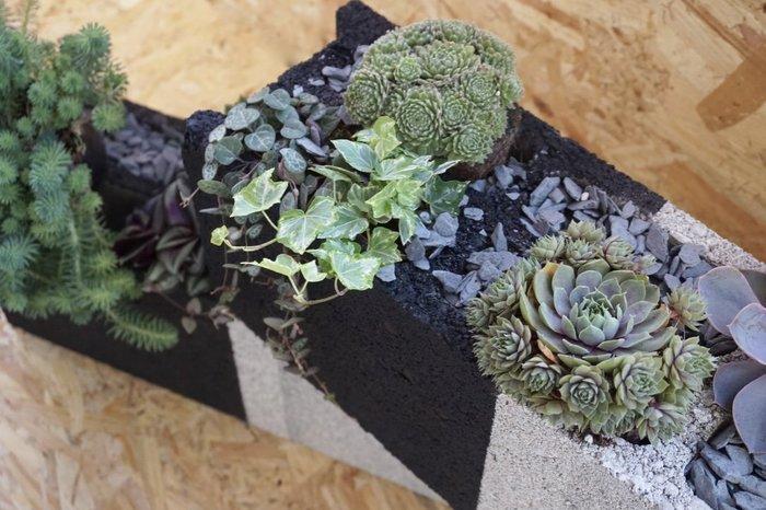 Recyclez vos parpaings en jardinière -Zoom sur le rendu final