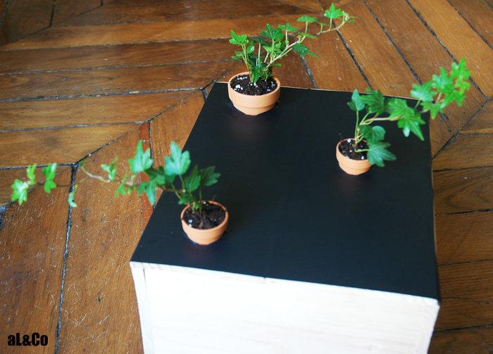 le mini plateau de jeu végétalisé-Et maintenant, au tour des plantes