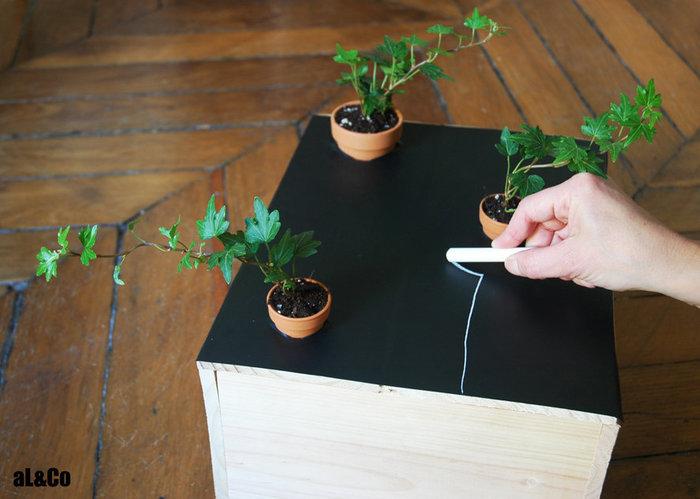 le mini plateau de jeu végétalisé-Dessinons…