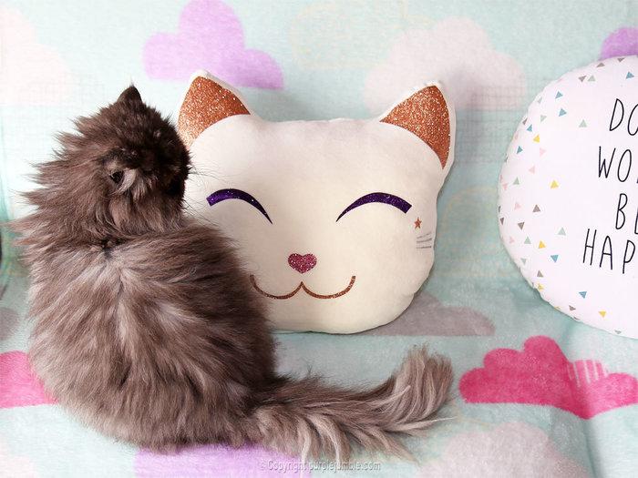 Un coussin chat kawaii tout doux-Rembourrer le coussin et s'installer !