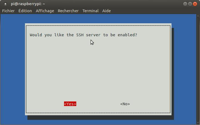 Terrarium 2.0 Raspberry pi-Activation du SSH