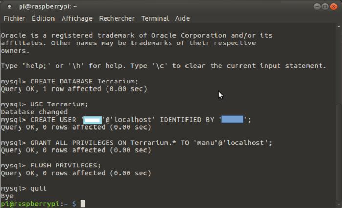 Terrarium 2.0 Raspberry pi-Création de la base de donnée