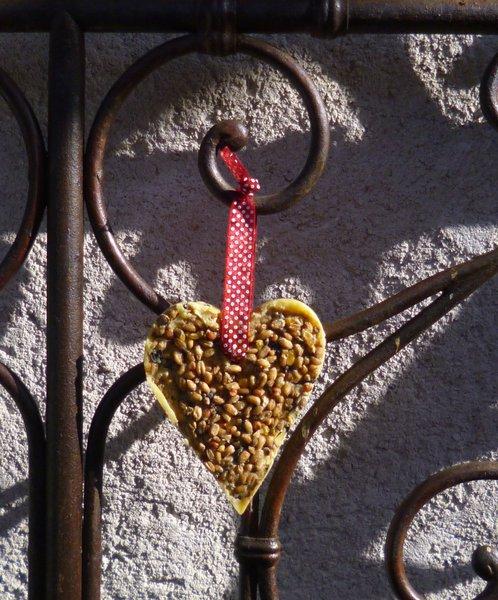 Un coeur en graines pour les oiseaux-Le titre de votre étape ici