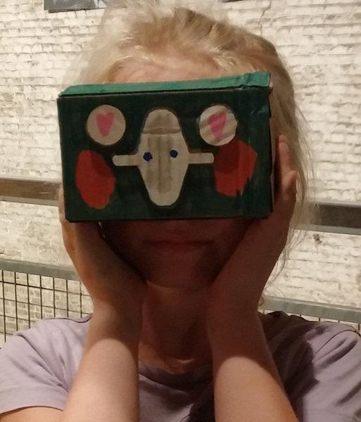 Lunettes de réalité virtuelle en carton-Option : décoration des lunettes