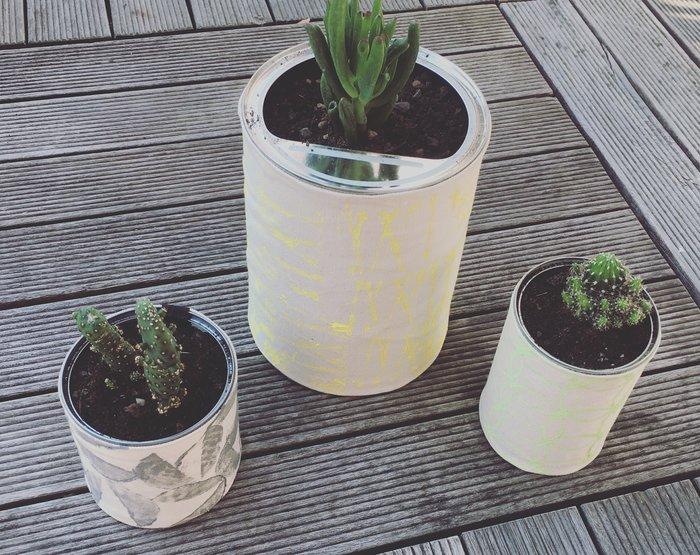 """DIY fête des pères : jardinet """"récup"""" pour papounet ! Le titre de votre tutoriel ici : DIY : -Taddddaaaammmm"""