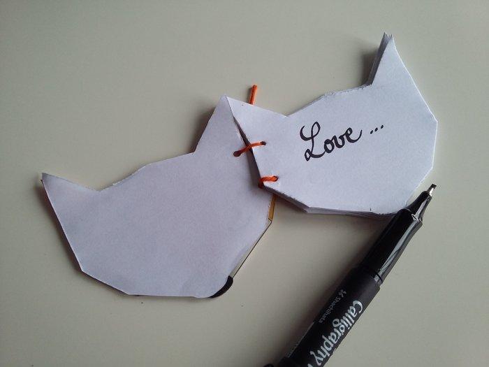 Mon petit carnet en plastique dingue -Et voilà votre carnet renard en plastique dingue !