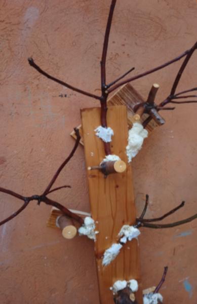 Un porte manteau avec des branches d'arbre-Collage