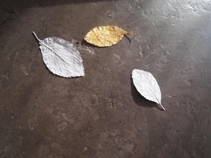 DIY : paquets cadeau nature et récup'-Peindre les feuilles