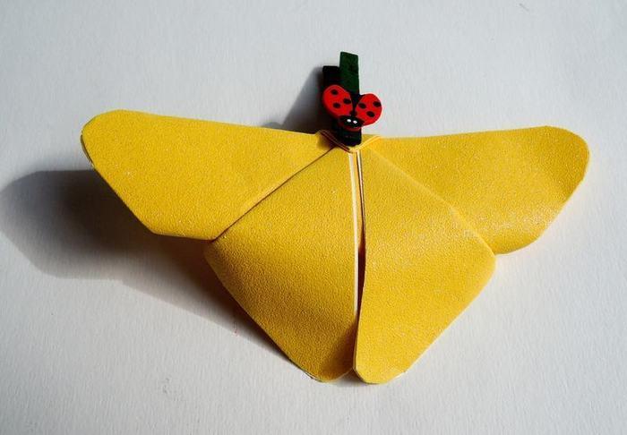 Cadre au papillon-Le papillon (suite)