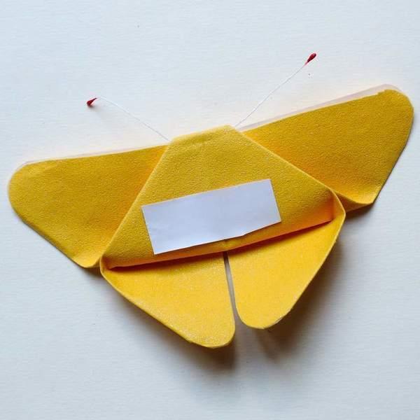 Cadre au papillon-Finitions