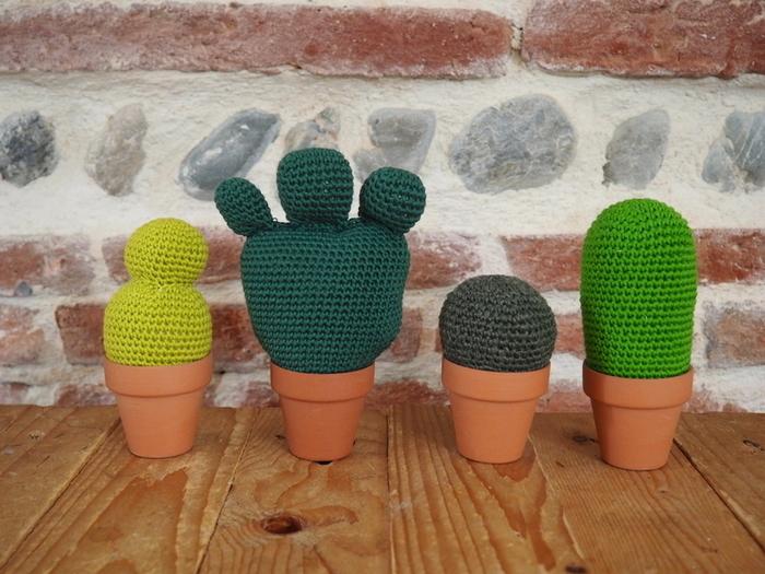 Doux Cactus-Coller les plantes dans les pots en terre