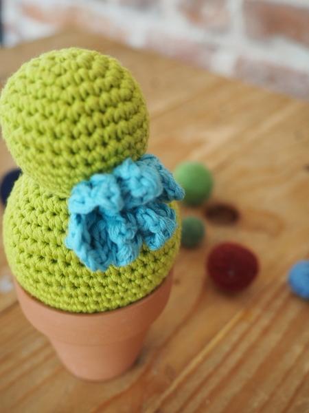 Doux Cactus-Les fleurs: fleurs à trois pétales