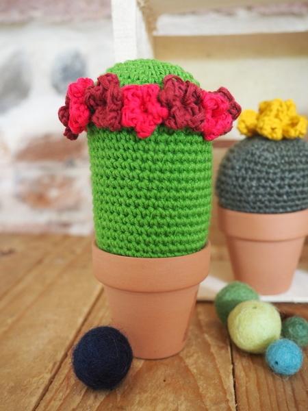Doux Cactus-Les fleurs: les fleurs à 5 pétales