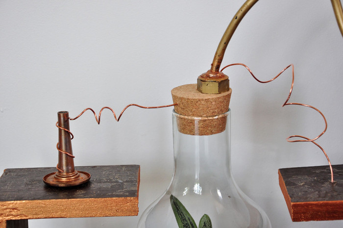 Un terrarium de laboratoire-Un terrarium de laboratoire