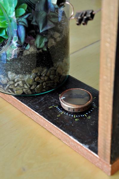 Un terrarium de laboratoire-Décoration de la structure