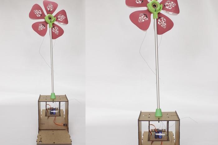 Assemblage d'une fleur à moteurs-Planter la fleur dans sa boîte