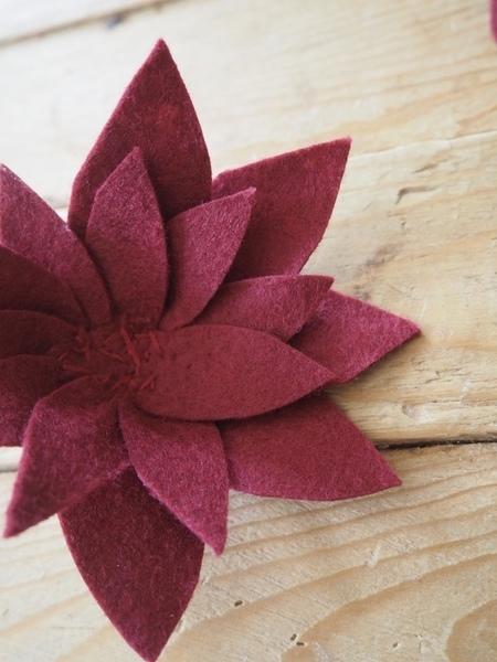 Poder de Flor-Dahlia