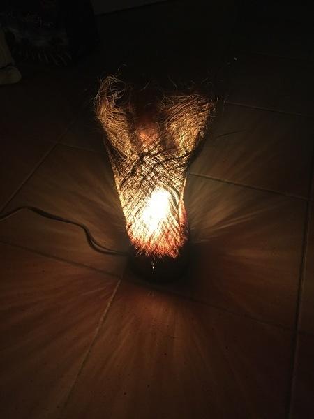 Une lampe en .... écorce de palmier-Le résultat final de jour et de nuit