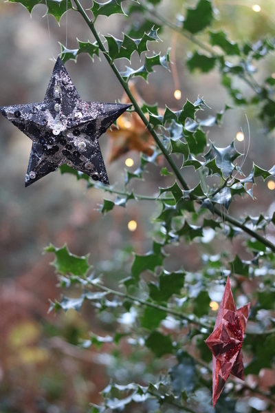 Des étoiles de Noël en 3D (et en capsules de café !)-Noël peut arriver !