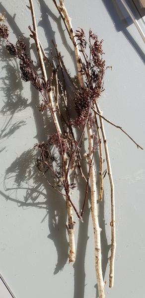 Bougeoir de l'Avent extérieur-Préparation des branches pour l'étoile de base