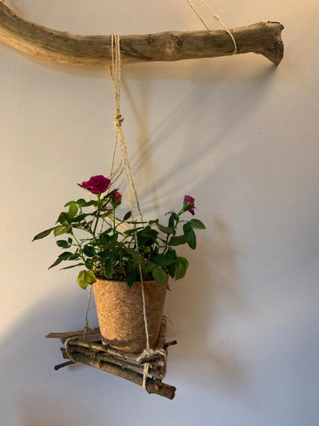 Suspension récupération et botanique.-Suspension du cache pot.