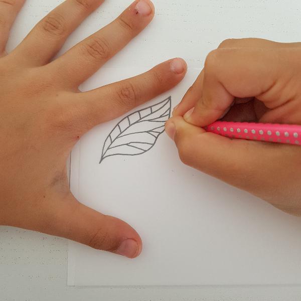 Graver un tampon Feuille de Thé (pour enfant dès 8 ans et adultes)-Décalquer le motif Feuille de Thé à graver