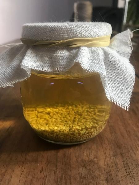 Fabriquer un germoir à graines et son socle -Préparation du bocal à germination