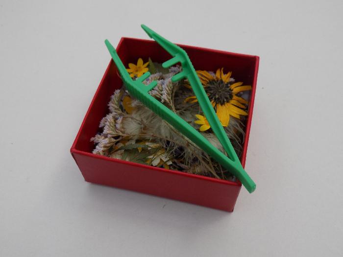 Comment créer un tableau de fleurs séchées sur une coquille Saint-Jacques avec la résine époxy-Matériel: fleurs séchées