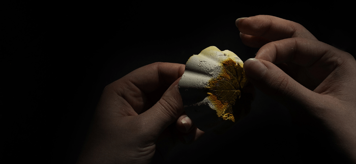 Patère déco en plâtre motif empreinte végétale & encre-