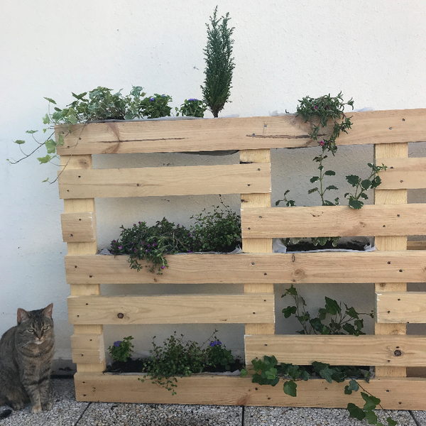 Un mur végétal en palettes-Créer les jardinières