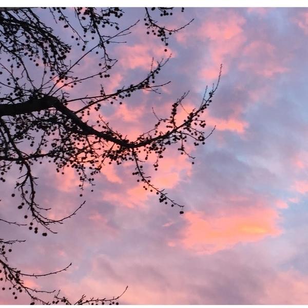 Light Box coucher de soleil-les photos