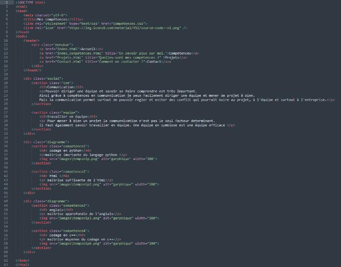 Portfolio web html-La page Compétences
