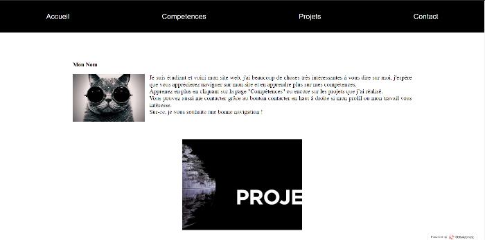 Portfolio web CSS-La page d'accueil