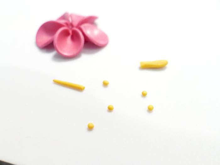 Barrette Feur d'Hibiscus-Formation du pistil