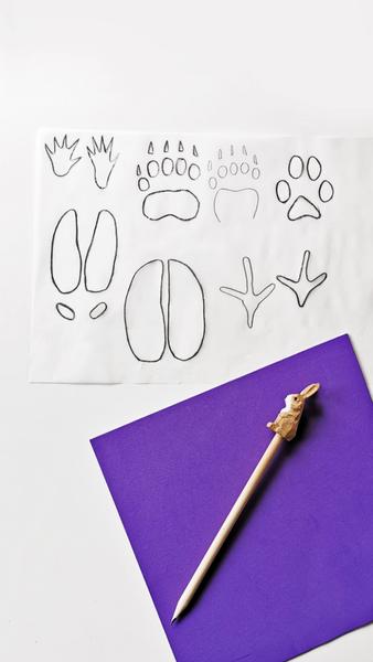 Tampons éponges traces de pattes d'animaux-