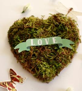 Un coeur végétal pour la St Valentin